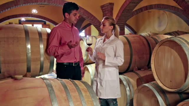 Male client discussing wine  with factory staff video