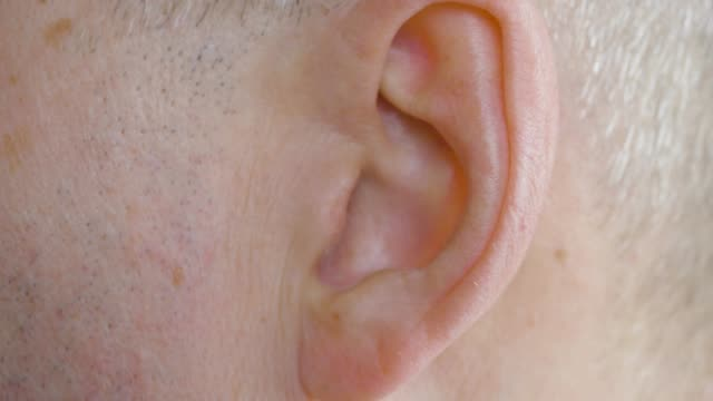 male ear close up. close up view man moving his ear, body part. - orecchio umano video stock e b–roll