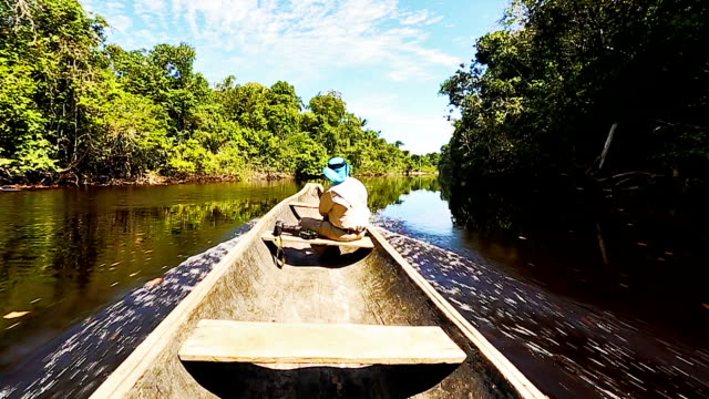 HD Male explorer sailing on indigenous canoe in the Amazon video