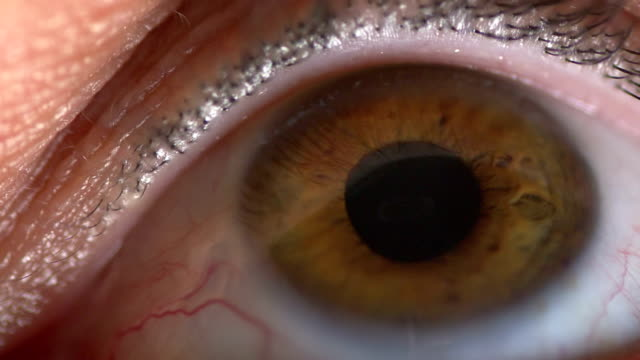 Male eye coloured brown in slow motion video