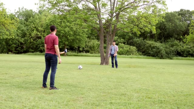 male family members play soccer at a family reunion - reunion stock videos & royalty-free footage