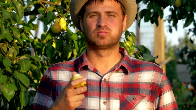 Male Farmer Eats A Ripe Pear On A Background Of Fruity Garden Happy Caucasian male farmer in hat and plaid shirt, standing in orchard, eating ripe and tasty pear, looking at camera and smiling, slow motion pear stock videos & royalty-free footage
