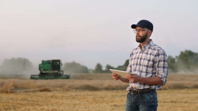A male farmer uses a digital tablet in the field