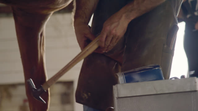A Male Farrier's Hands Use a Hammer to Nail a Metal Horseshoe to a Brown Horse's Hoof in a Barn on a Farm