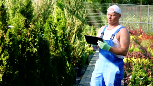 male gardener checks quality of plants, takes notes on digital tablet, walking along garden center or greenhouse. growing and caring for plants. floristry, gardening , horticulture, flower business - vídeo