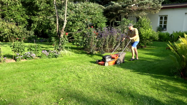 male gardener man pushing lawn mower in the yard of his homestead house. FullHD video