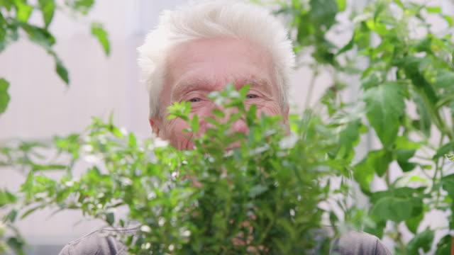 Male gardener with a plant in organic farm