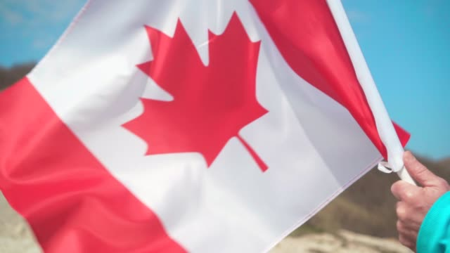 male hand holding a flag of canada. the flag of canada develops in the wind against a sky. - canada day stock videos & royalty-free footage