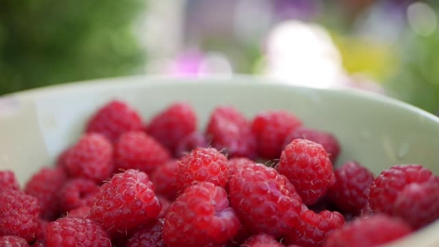 vídeos de stock e filmes b-roll de male hand takes raspberry from bowl with a lot of fresh raspberries. closeup - framboesa