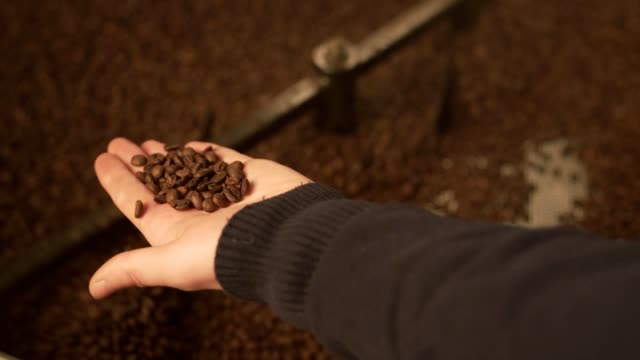 Male hands holding coffee beans over roaster video