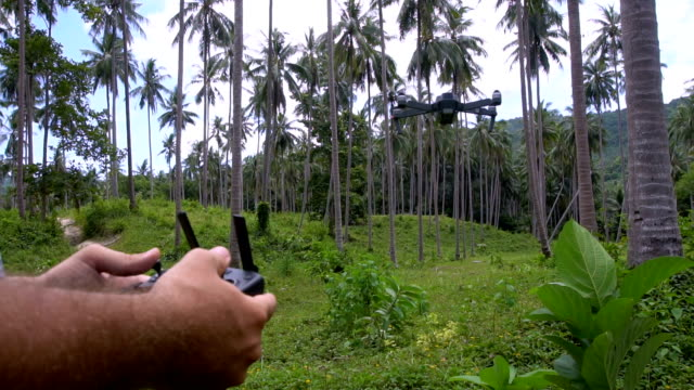 Male Hands Operating Drone in Palm Tree Grove video