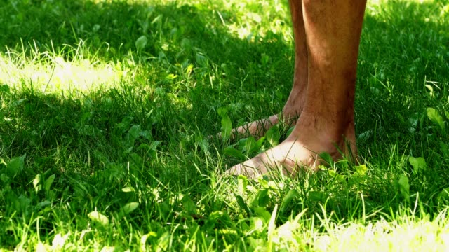 male hands stretch to the legs which stand on the green grass male hands stretch to the legs which stand on the green grass bodyweight training stock videos & royalty-free footage