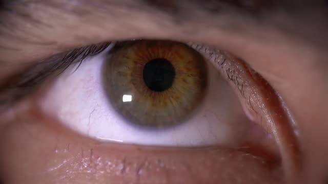 Male Hazel Eyeball Close Up Looking Forward video