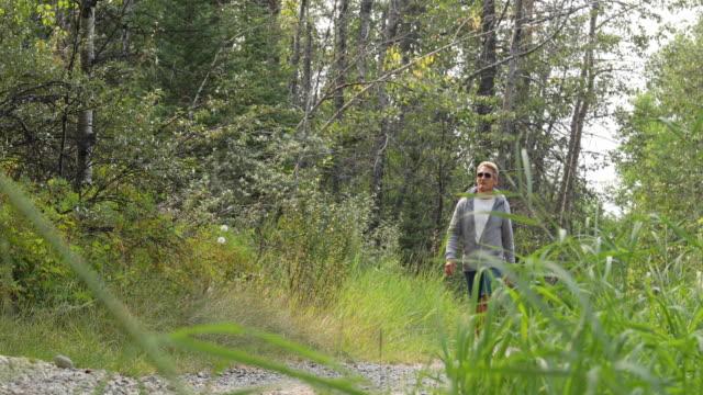 vidéos et rushes de randonneur mâle suit le sentier qui traverse des forêts herbeuses - un seul homme d'âge mûr