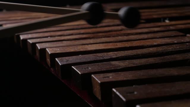 Male musician play xylophone or marimba