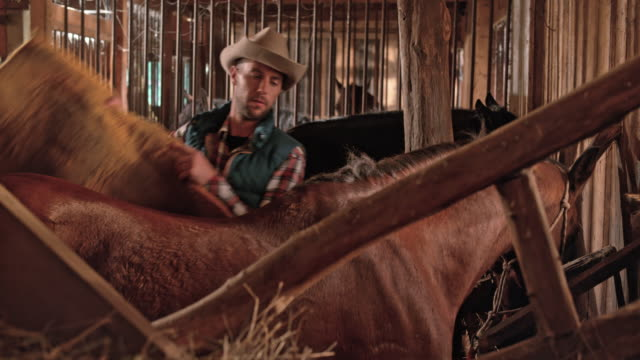 DS Male rancher putting a saddle blanket on his horse video