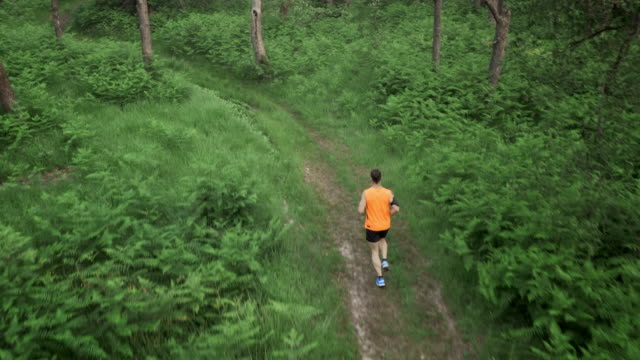 AERIAL Male runner running on a forest path video