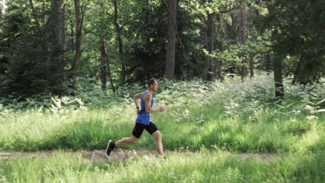 MO DS de San Luis Obispo de sexo masculino corredor corriendo on forest trail en el sol - vídeo