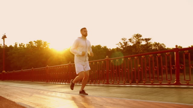 male running in the morning on the promenade Man jogging along big modern bridge. Caucasian guy doing workout outdoors. human back stock videos & royalty-free footage