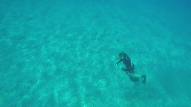 Male snorkeler spears fish with trident spear gun