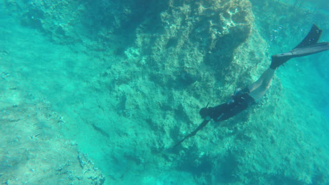 Male spear fisherman dives to ocean bottom