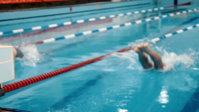 Male swimmer at the swimming pool video