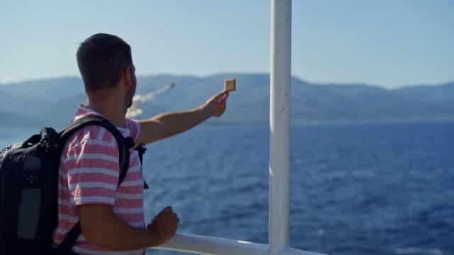 Male tourist on a ferryboat feeding seagulls