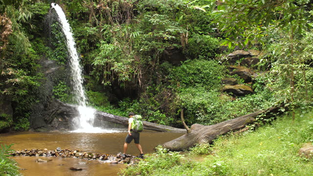Male trekker trekking in the rainforest on the creek waterfall adventure in green forest