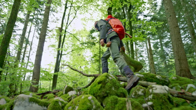 Male wilderness survival expert walking in a forest with a backpack