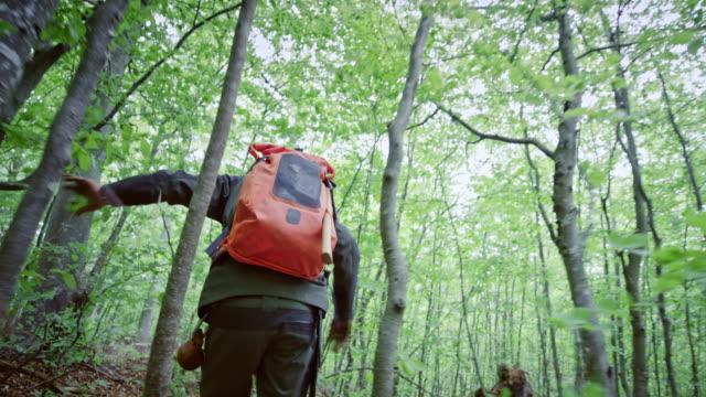 ts erkek vahşi yaşam uzmanı ormanda çalışan - bakir yer stok videoları ve detay görüntü çekimi