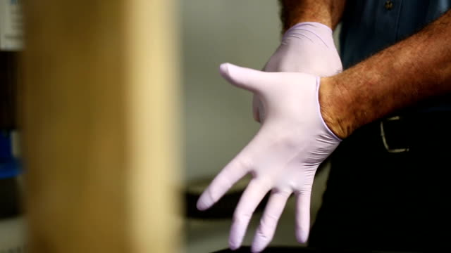 Male Worker Puts on Surgical Gloves video