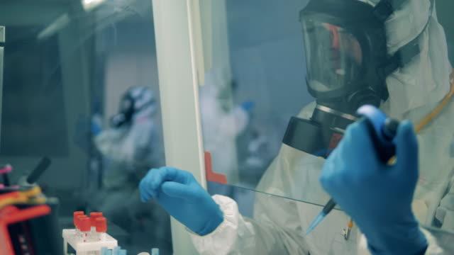 manliga arbetstagare använder pipett samtidigt utveckla ett vaccin i laboratorium. - corona vaccine bildbanksvideor och videomaterial från bakom kulisserna