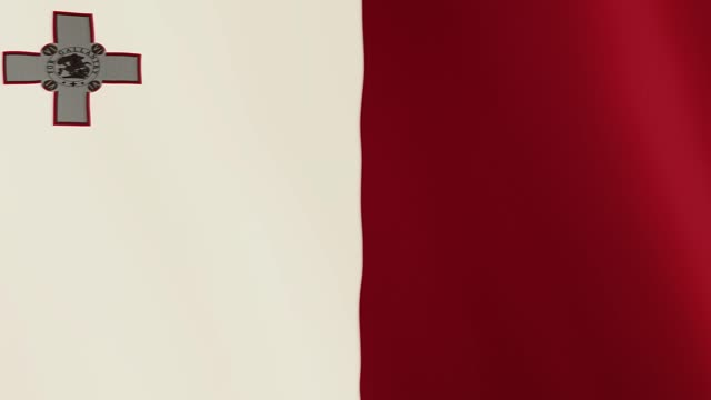 Malta flag waving animation. Full Screen. Symbol of the country video