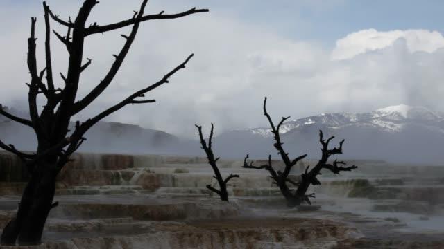 mammoth springs - utdöd bildbanksvideor och videomaterial från bakom kulisserna
