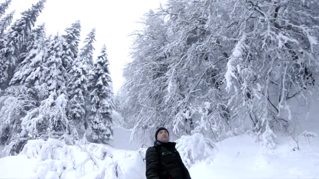vídeos de stock e filmes b-roll de man admires winter forest - man admires forest