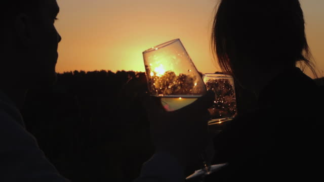A man and a woman are in nature, they drink wine and watch the sunset.