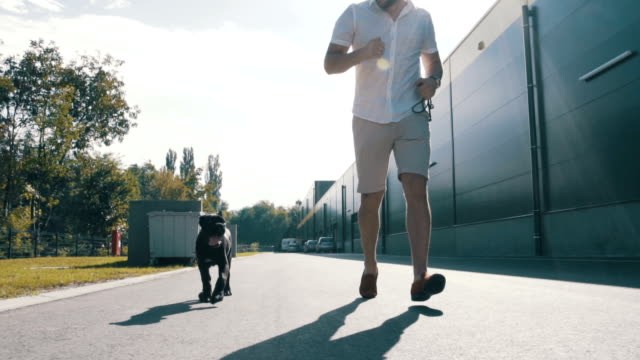 Man and dog jogging video