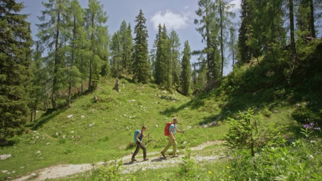 Man and woman hiking across a sunny forest clearing in the mountains