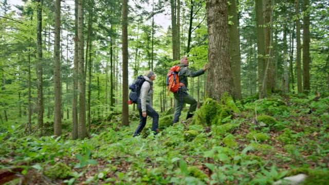 Man and woman walking through a forest carrying large backpacks