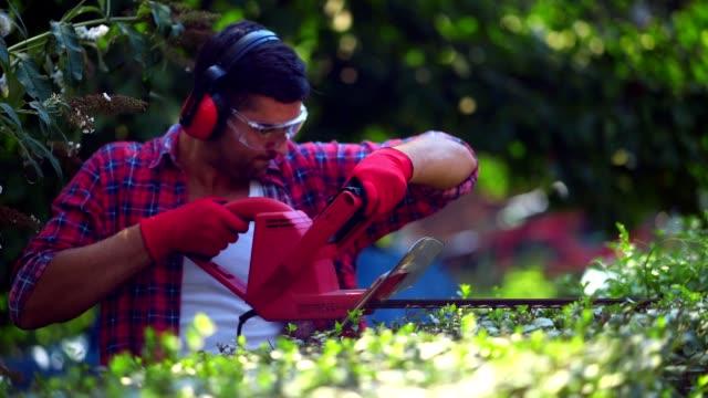 man arranging hedge in the garden - solo un uomo giovane video stock e b–roll