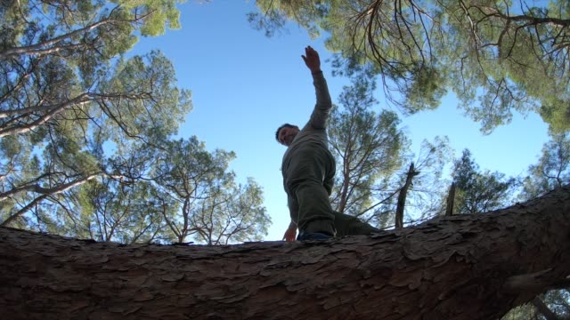 man balancing on fallen tree in forest - albero caduto video stock e b–roll