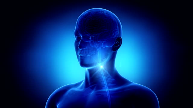 Man brain in loop video