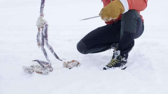 vidéos et rushes de ws man dépeçage d'un crabe - coquillage