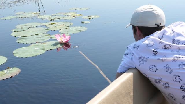 Man captures Lotus (Nelumbo nucifera)