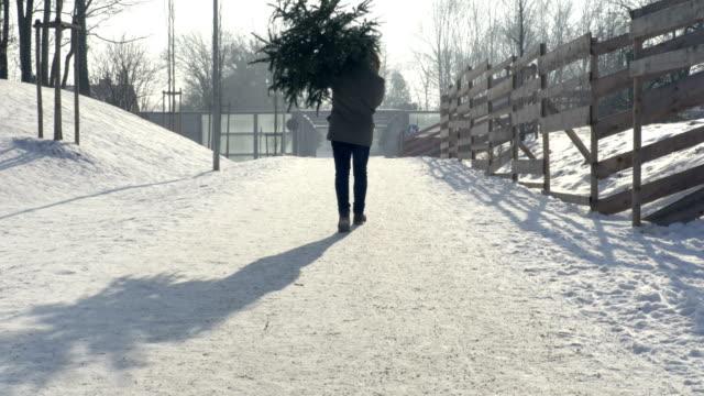 man redovisade julgran - bära bildbanksvideor och videomaterial från bakom kulisserna