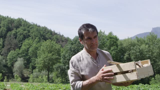 man carrying crate of vegetables at farm - 50 54 lata filmów i materiałów b-roll