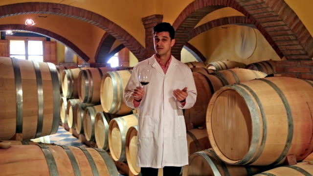 Man checking ageing process of red wine video