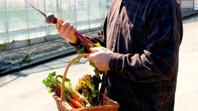 Man checking beetroot vegetable 4k video