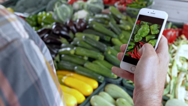 Man checking types of produce on his phone standing by a marketstall video