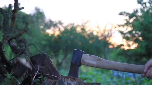 adam bir günlük bir balta ile pirzola. - şömine odunu stok videoları ve detay görüntü çekimi